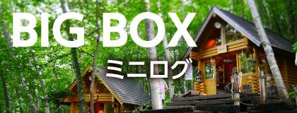BIG BOX ミニログ